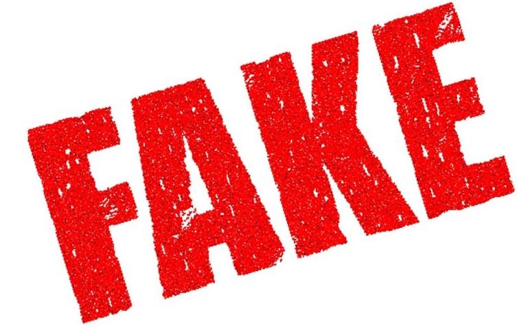 Thế giới Skinfood có bán hàng Fake không?